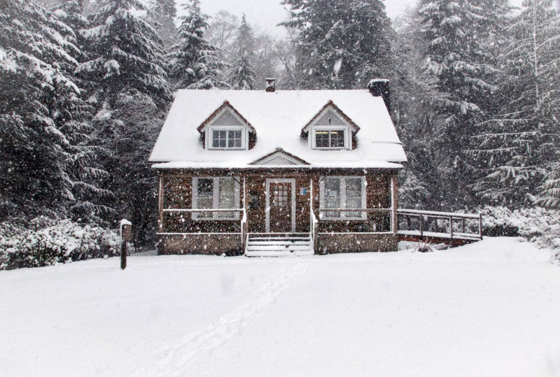 house surrounded by trees in winter with snow